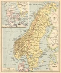 suede norvege