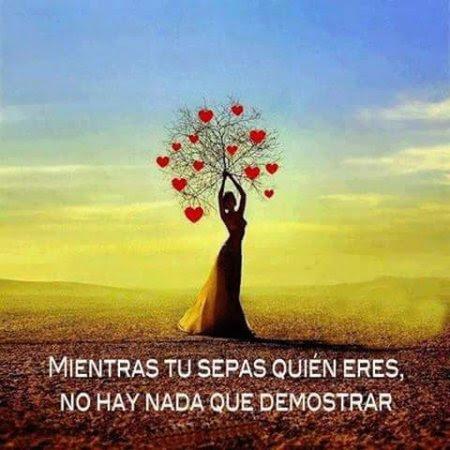 Mientras Tu Sepas Quien Eres Amor Propio Imagenes Bonitas Frases