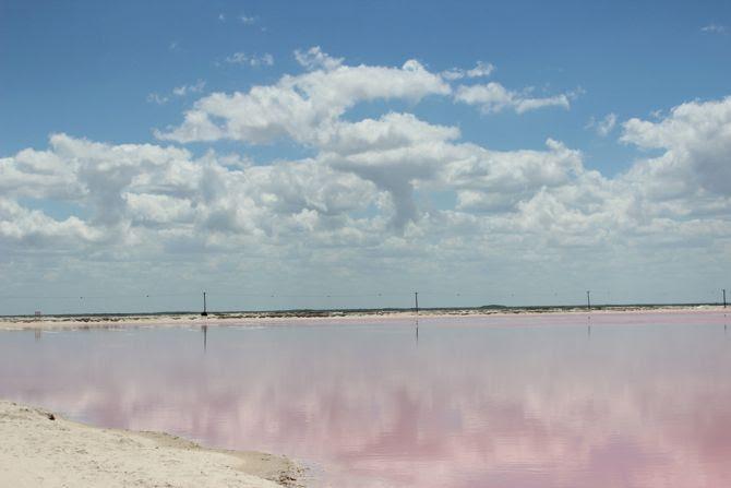 photo 9-las coloradas lac rose mexique yucatan_zpsf99wa9bl.jpg