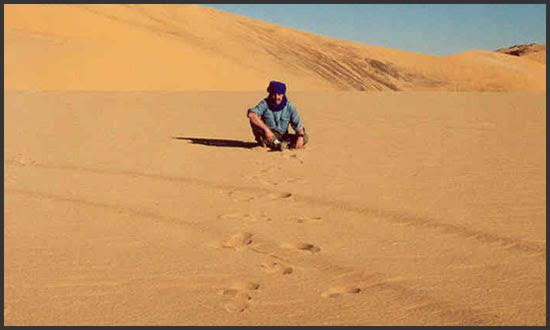 Картинки по запросу фото жара в Сахаре