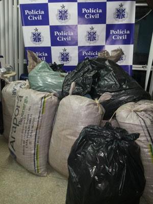 Polícia apreende cocaína 'tipo exportação' em condomínio na Bahia (Foto: Divulgação)