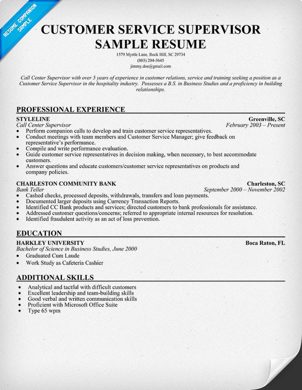 resume format  resume examples of customer service