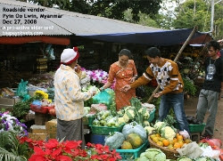 Myanmar, Pyin Oo Lwin, Buying fruits from a roadside vendor. Toa Payoh Vets