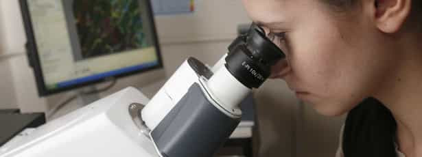 Vírus inativo há 30 mil anos volta a ganhar vida