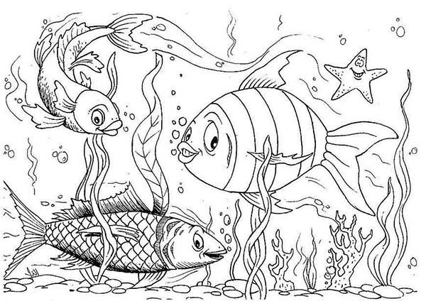 Happy Fishes in Fish Tank Coloring Page - NetArt