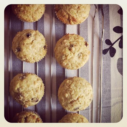 Muffins al quark, fiocchi d'avena e uvetta