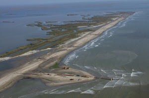 barrier island berm building