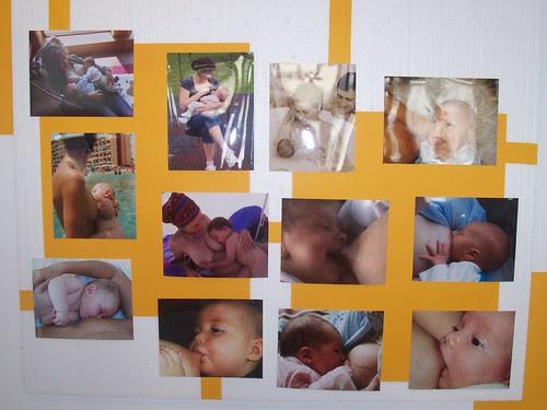 exposición fotografías concurso fedegalma 2009