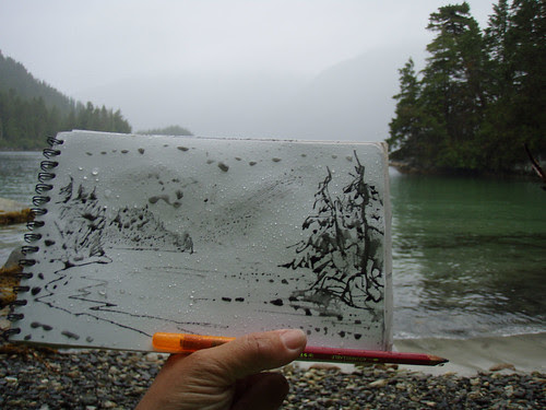 Alaska 2012: Process