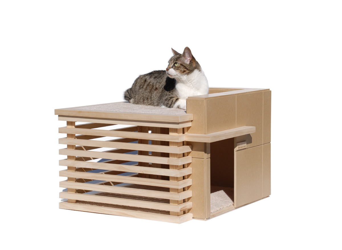 cat design home furniture the modern condo everything best