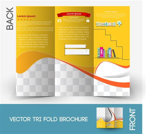 brochure  vector    vector