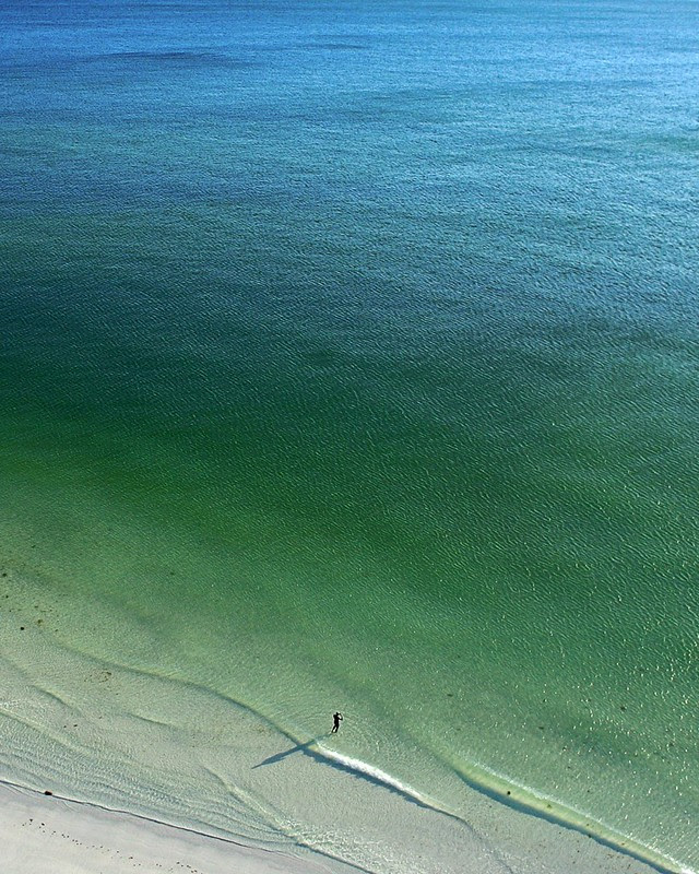 Lone Swimmer at Lido Beach, Florida