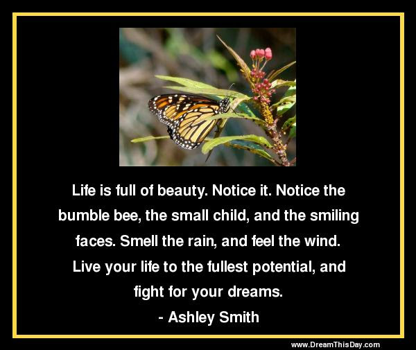 Quotes About Living Life To The Fullest Live Life To The Fullest