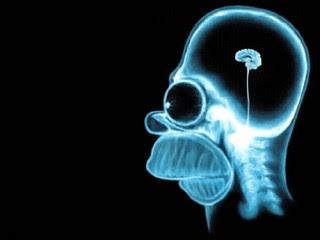 homeruv-mozek