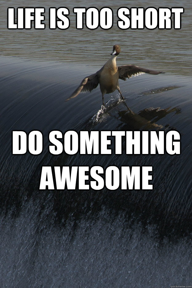 Life Is Too Short Do Something Awesome Misc Quickmeme