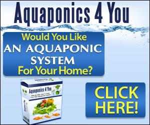 Aquaponics Design Plans