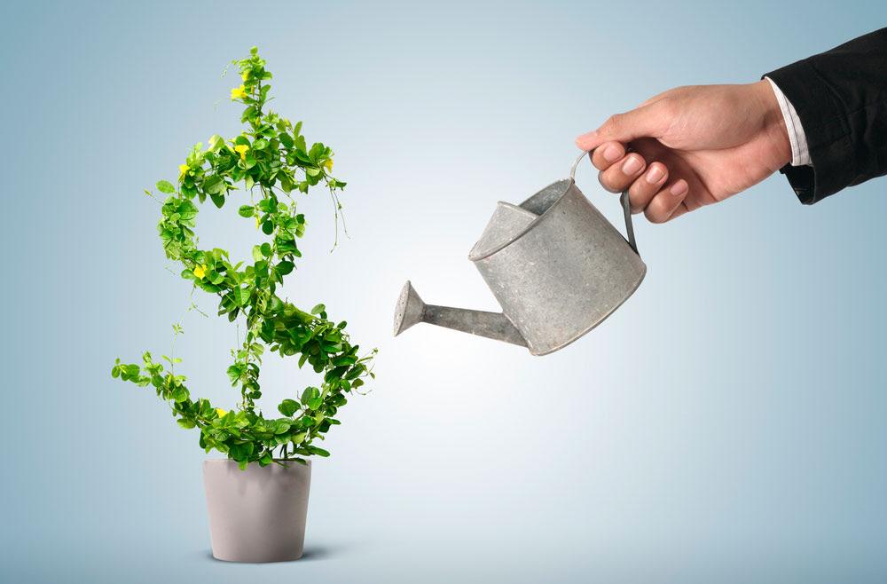 Aprender a Investir