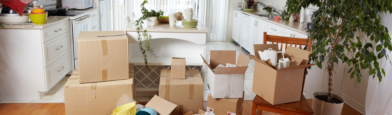 Move In/Move Out Cleaning - Athena Home Solutions