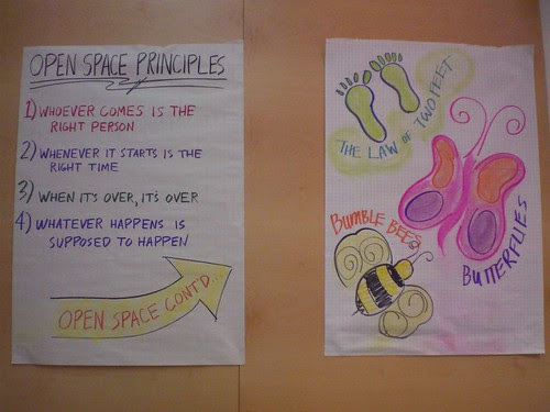 Open Space Principles and the Laws!
