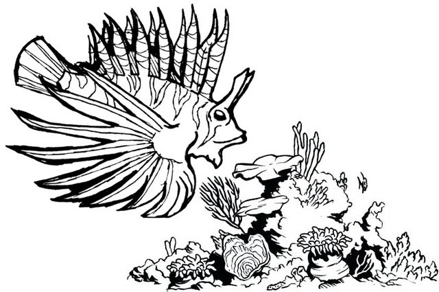 beautiful lionfish on a tropical coral reef coloring page