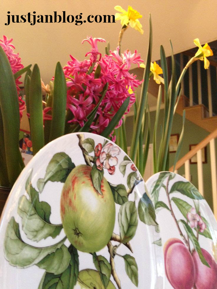 Fruit Plates with Spring hyacinth