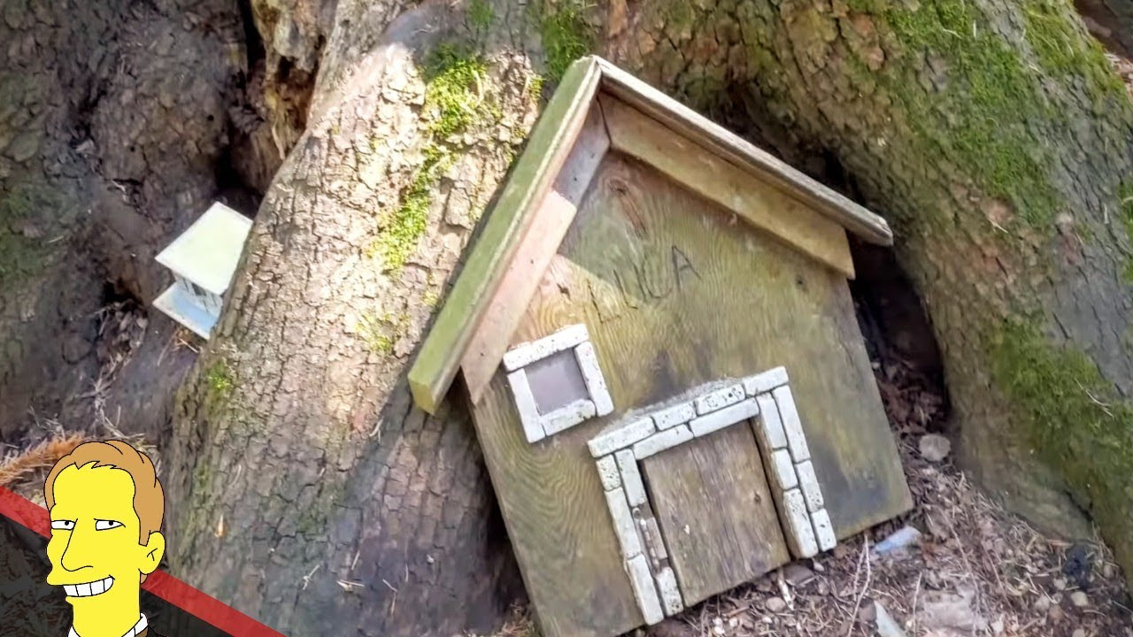 Tiny wooden fairy house resting at base of a tree in Redwood Park