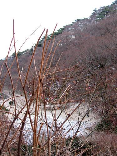 View from Seokguram Grotto
