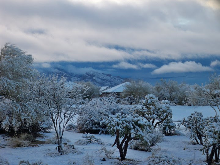 File:2011 snow in tucson and oro valley.jpg