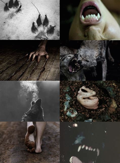 halloween aesthetics werewolf aesthetic licantropos
