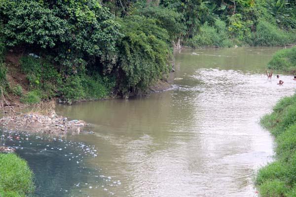 kamu semangatku Sungai  Tercemar Limbah Pabrik Ikan ikan