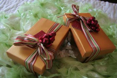 Da un buen regalo a tus seres queridos