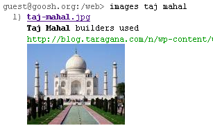 Fig: Google Image Search