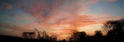 Sunset of Wispy Clouds (4)