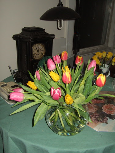 Tulips for Mom Kat