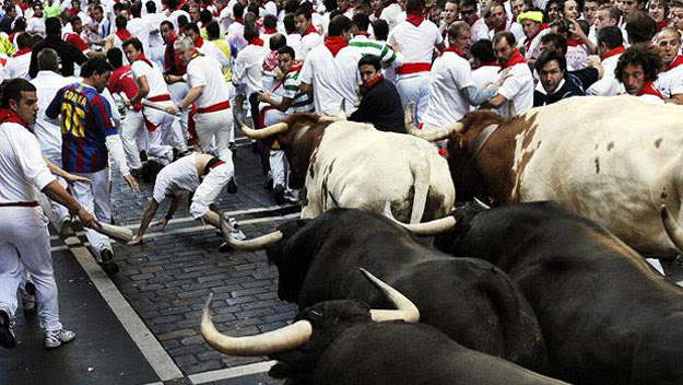 Thrill-seekers running from bulls