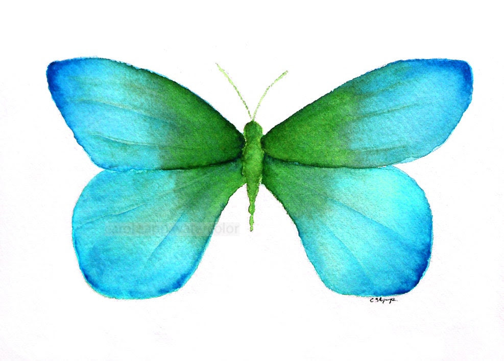 watercolor  painting blue green butterfly archival print - carolsapp