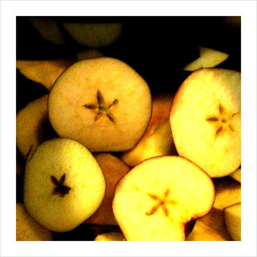 Apple's prior to apple jelly