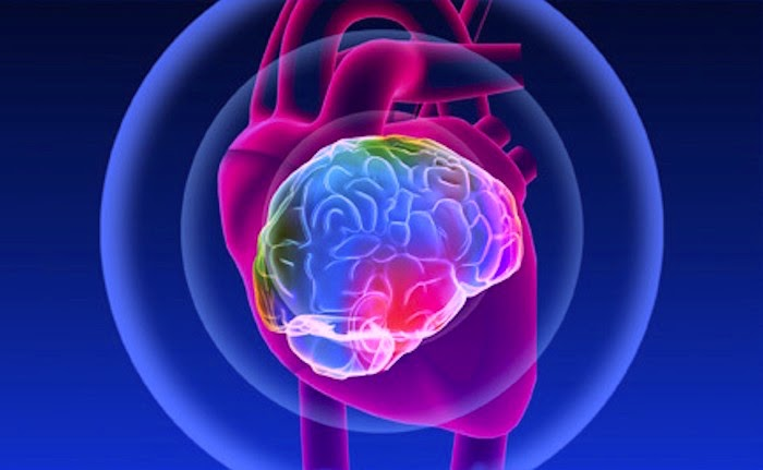 ROTINAS SAUDÁVEIS: A Inteligência Do Coração é A Sabedoria