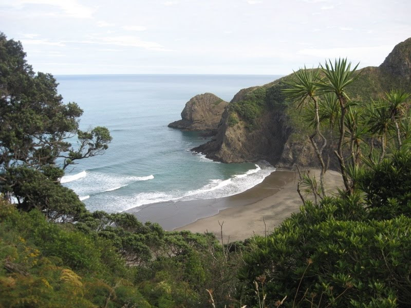 View of White's Beach from the track down from Anawhata Road