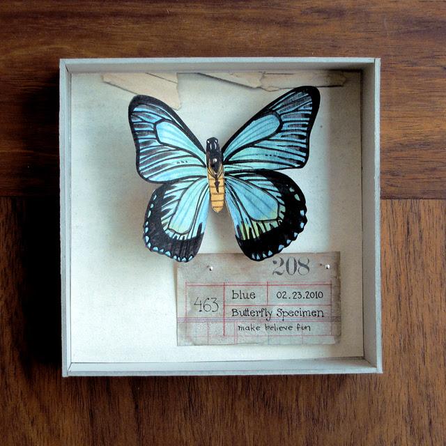 Watercolor butterfly specimen box