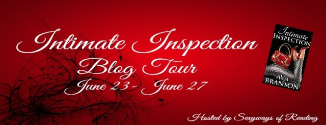 Intimate Inspections BlogTourBanner