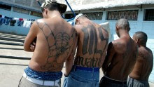 """Tegucigalpa, HONDURAS:  Four unidentified members of the Mara Salvatrucha """"MS-13"""" (juvenile gang) show their tatoos in the unit where they are kept imprisioned in the National Penitentiary in Tamara, 30km north of Tegucigalpa, 01 February 2006. AFP PHOTO/Elmer MARTINEZ  (Photo credit should read ELMER MARTINEZ/AFP/Getty Images)"""