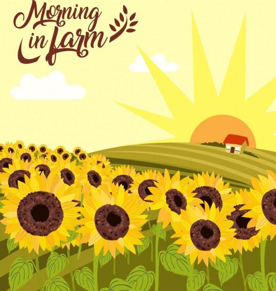 Bunga Matahari Pertanian Gambar Hill Matahari Ikon Warna