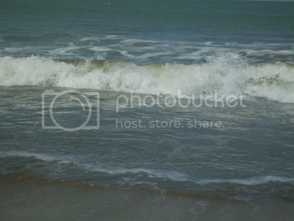 More Surf Pictures, Images and Photos