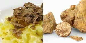 Manusia dan masakan memang tak sanggup di pisahkan 5 Makanan Langka Dan Termahal