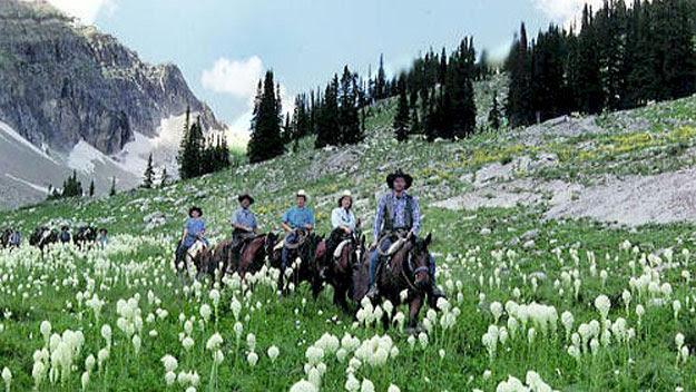 Horseback riding through Swan Valley