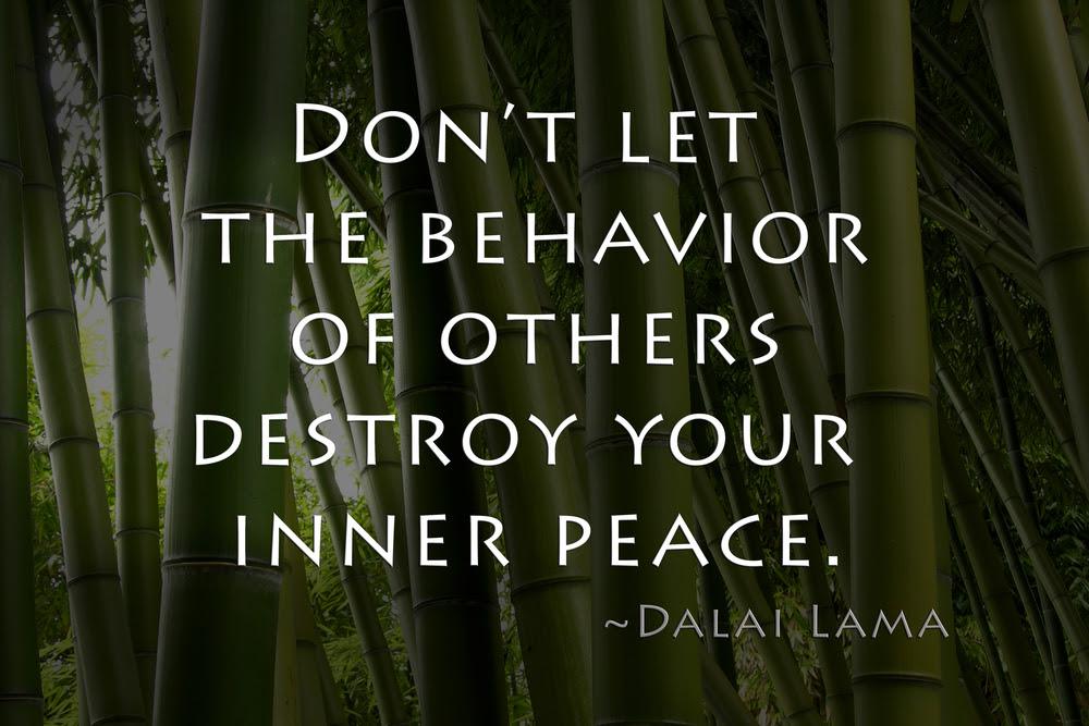 Dalai Lama Quote Lifelong Enerjoy