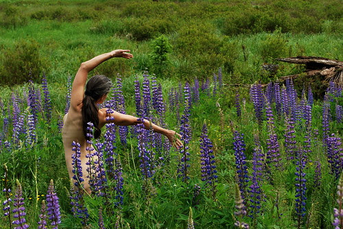 Dancing amongst the lupines
