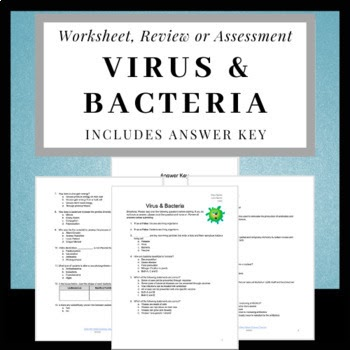 Virus And Bacteria Worksheet Answer Key - Nidecmege