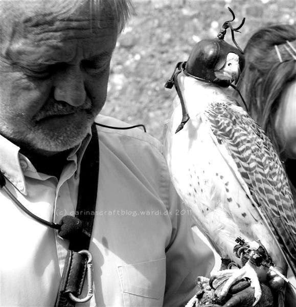 A man and his bird of prey